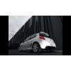 Intermédiaire Evolution Akrapovic Renault Clio 3 RS 200
